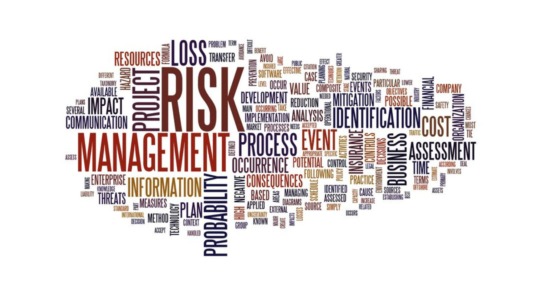 Risk Management Word Cloud